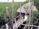 Gambia_95